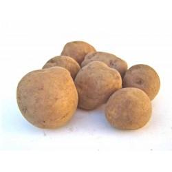 Pomme de terre Océania 1 kg
