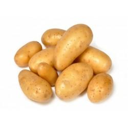 Pommes de terre nouvelles Amandine bio 1 kg