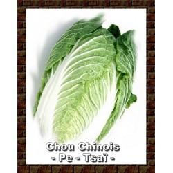 Sauté aux légumes et pe-tsaï