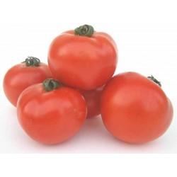 Tomates rondes rouges bio 1Kg