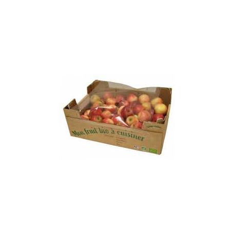 Pommes Red star bio 1 kg