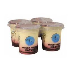 4 yaourts aux fruits bio 125 g Ferme de la Haute folie