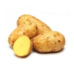 """Pommes de terre""""Blanche"""" bio 1 kg"""