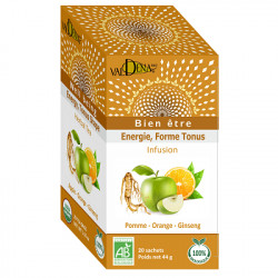 Infusion pomme orange ginseng bio 44g Valdena Energie forme