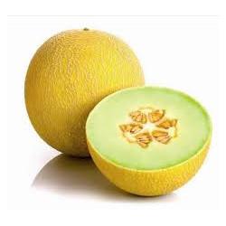 Melon Galia bio la piéce