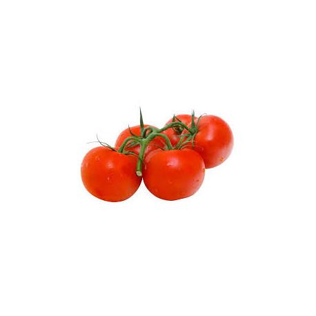 Tomates grappe bio 1 kg