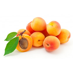 Abricots bio 1 kg