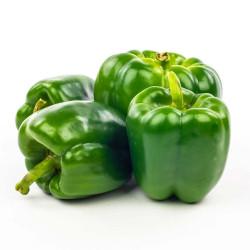 Poivrons vert bio 500 g