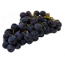 Raisin Noir Ribol bio 1 kg