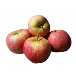 Pommes Elstar bio 1 kg