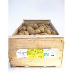 Cageot Pommes de terre Charlotte 14 kg
