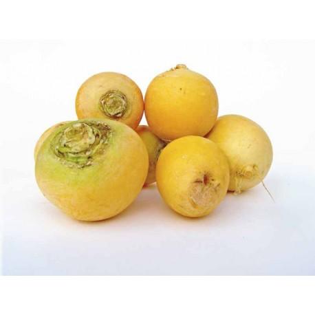Navets boule d'or variété ancienne 1 kg