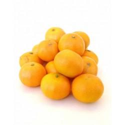 Clémentine origine Maroc 1 kg